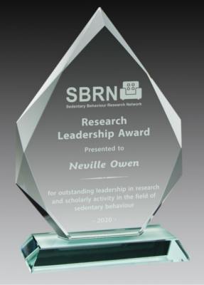 2020 SBRN Research Award - picture